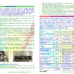 after-life-communication-plan-bionad_page_2
