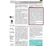Articoli2