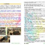 laymans-report-bionad-ita1_page_2