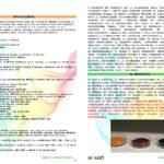 laymans-report-bionad-ita1_page_3