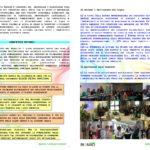 laymans-report-bionad-ita1_page_4