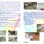 laymans-report-bionad-ita1_page_6