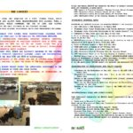 laymans-report-bionad_page_2