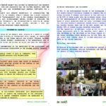 laymans-report-bionad_page_4
